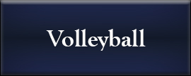 girls volleyball link for more information